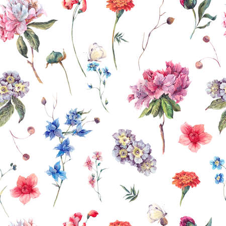 stems: Nature seamless watercolor background with summer garden flowers, floral watercolor botanical illustration on white