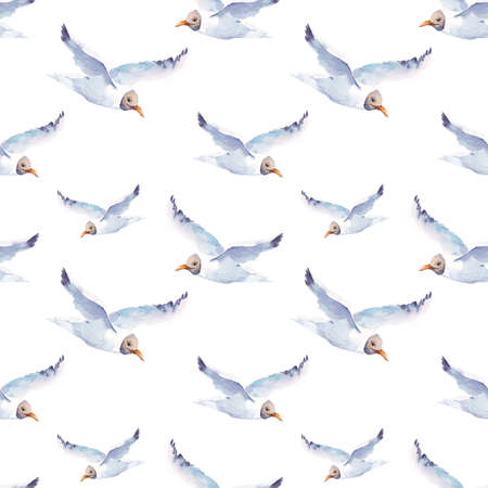 seabird: Summer watercolor seamless pattern with sea gull, Hand painted nautical illustration