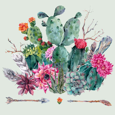 Exotic natural vintage watercolor bouquet in boho style. Cactus, succulent, flowers, twigs, feathers and  arrows. Botanical isolated nature cactus Illustration