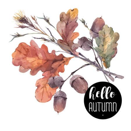 나뭇 가지, 노란색 오크 잎과 도토리의 가을 빈티지 꽃다발. 식물 그림입니다. 인사말 카드. 흰색 배경에 고립
