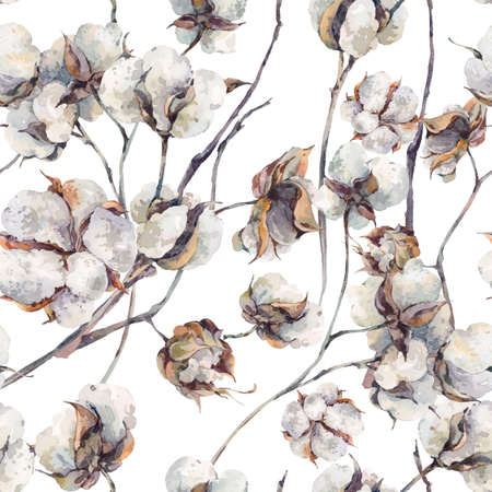 Watercolor vintage bouquet of twigs and cotton flowers. Botanical watercolor  seamless pattern.