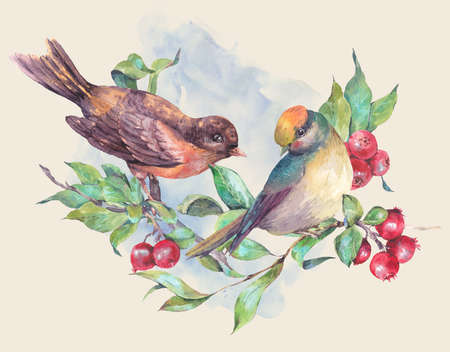 winter garden: Vintage hand drawing watercolor card, pair of birds on a branch with red berries. Watercolor natural illustration