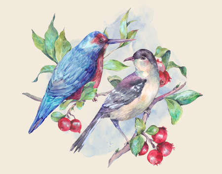 Vintage hand drawing watercolor card, pair of birds on a branch with red berries. Watercolor natural illustration