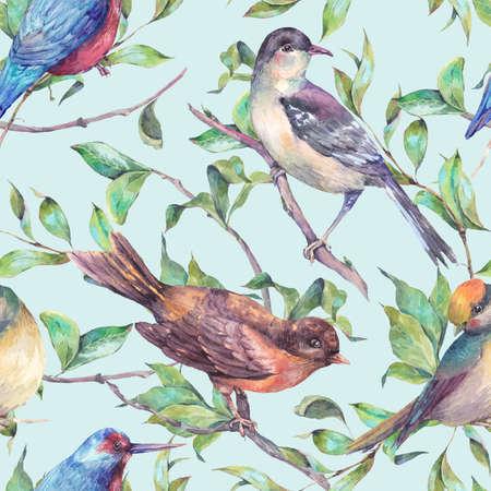birds on branch: Vintage nature watercolor seamless pattern, birds on a branch. Watercolor natural illustration