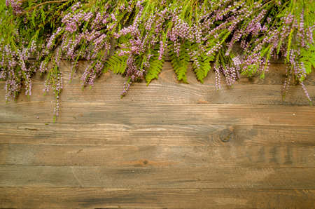 herbal background: Beautiful forest purple wildflowers on a rustic wooden background, natural autumn style decorations. Background space for text. Natural floral border background vintage mock up Stock Photo