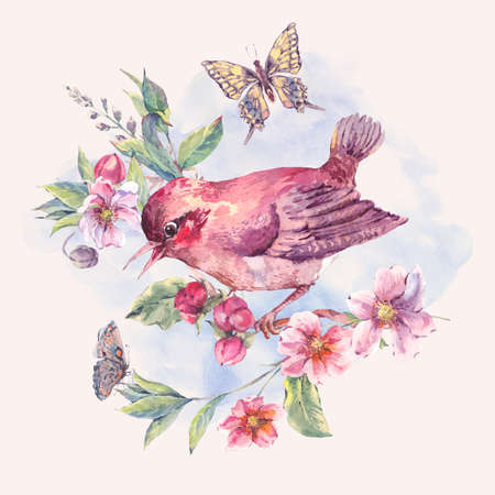 birds on branch: Vintage watercolor floral card, bird on a blooming branch with gentle pink flowers, butterflies and twigs, natural botanical watercolor illustration isolated on white Stock Photo