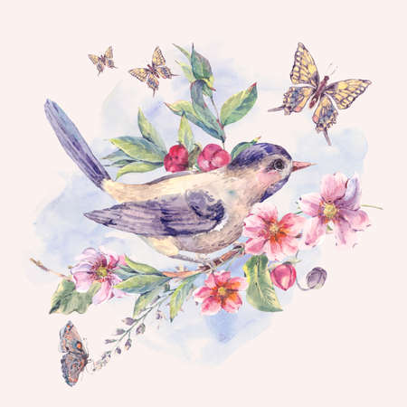 birds on branch: Vintage watercolor floral card, bird on a blooming branch with gentle pink flowers, butterflies and twigs, natural botanical watercolor illustration Stock Photo