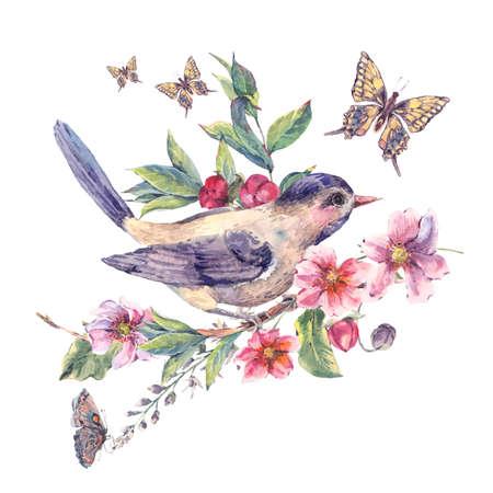 pajaros: acuarela del vintage tarjeta floral, pájaro en una rama en flor con flores de color rosa suave, mariposas y ramas naturales, ilustración botánica acuarela aislados en blanco Foto de archivo