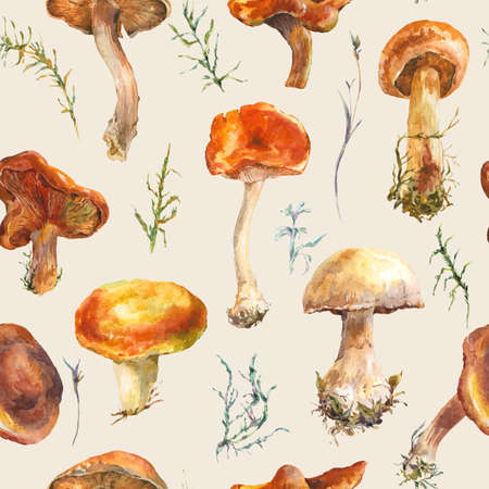 botanical illustration: Watercolor vintage mushrooms seamless pattern. Fall harvest forest mushrooms. Natural autumn botanical illustration.
