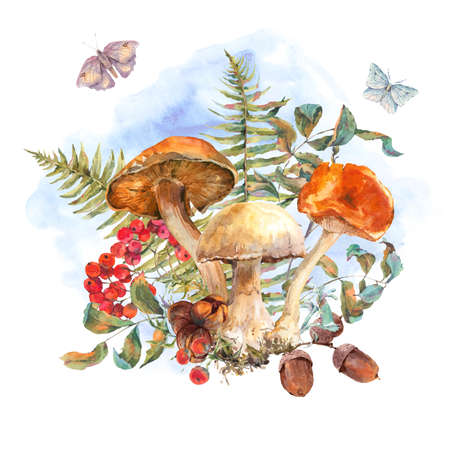 rowan: Watercolor vintage mushrooms greeting card. Fall harvest forest mushrooms. Rowan, butterflies, leaves, fern and twigs. Natural autumn botanical illustration. Stock Photo