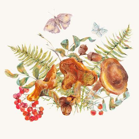 水彩のビンテージ キノコ グリーティング カード。秋の収穫の森の茸。ナナカマド、蝶、葉、シダ、小枝。自然秋の植物のイラスト。 写真素材 - 63003871