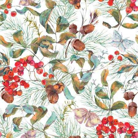 albero da frutto: Acquerello modello d'epoca senza soluzione di continuità autunno con rami di sorbo, abete rosso, ghiande e farfalle. caduta naturale illustrazione botanica.