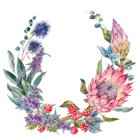 arrangement: Watercolor floral wreath, vintage design element with protea, stachys, thistles, blackberries and wildflowers, botanical natural watercolor round frame isolated on white background