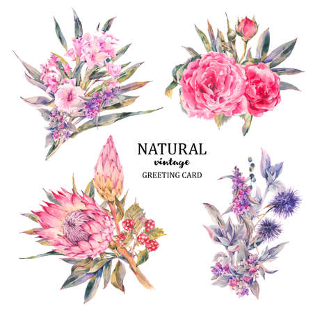 Set van vintage bloemen vector boeket van rozen, protea, stachys, distels, bramen en wilde bloemen, botanische natuurlijke bloemen Illustratie op wit. Bloemen wenskaart, bloem decoratie boeket