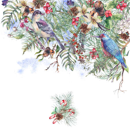 pine decoration: Christmas Vintage Floral Greeting Card, New Year Decoration with Birds, Poinsettia, Pine Branches, Nuts, Fern Leaves, Fir Cones. Botanical Natural Watercolor Illustration Isolated on White Background Stock Photo