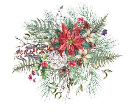 Christmas Vintage Floral Greeting Card, New Year Decoration with Poinsettia, Fern Leaves, Pine Branches, Nuts, Fir Cones. Botanical Natural Watercolor Illustration Isolated on White Background Stock Photo