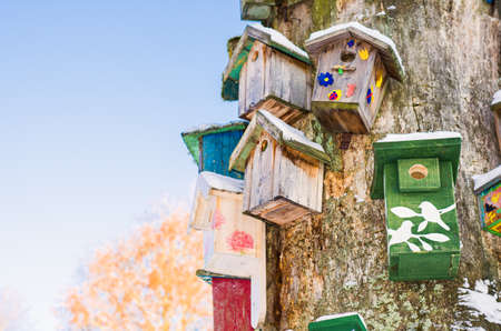 Sunny bright winter day. A lot of vintage hand-made wooden birdhouses on old  dry tree, sunlight, daylight, outdoors. Natural winter decoration. Nesting boxes collection