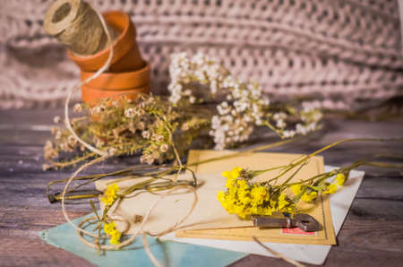 flores secas: Cosecha de la escena postales antiguas, flores secas, vasos antiguos, retro llave en el fondo de madera. nostalgia romántica Naturaleza muerta, el espacio de fondo para el texto Foto de archivo