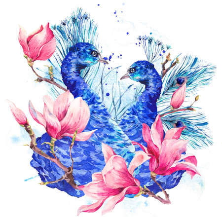 exotic flowers: Watercolor Peacock with Flowers Magnolia