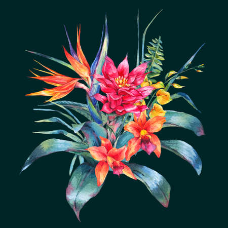 flores exoticas: Acuarela tarjeta de felicitación tropical floral de la vendimia