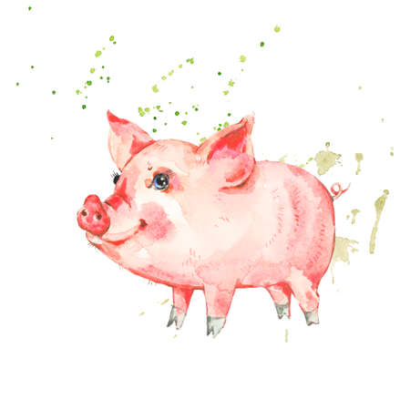 Cute watercolor piggy isolated on white background