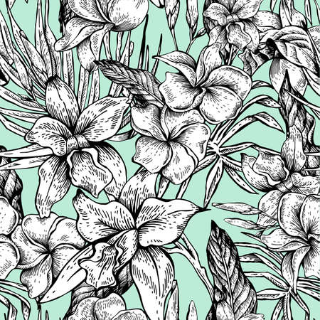 Vector seamless tropical floral do vintage Banco de Imagens - 73256055