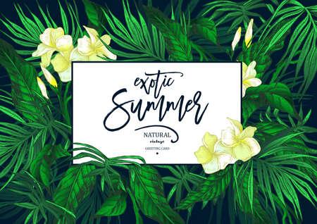 Vector Summer Leaves Vintage Exotic Greeting Card Reklamní fotografie - 73256074