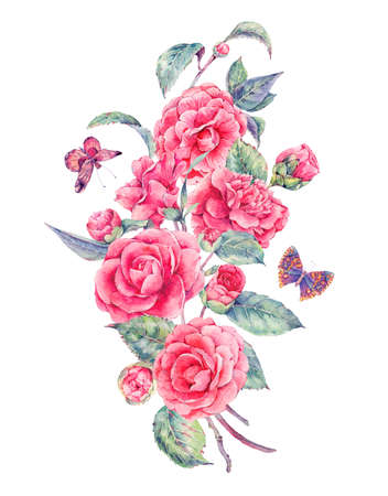 garden flowers: Vintage watercolor garden flowers with pink camellia