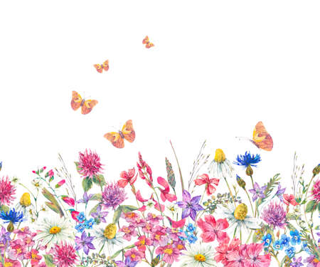 Watercolor seamless border with wildflowers