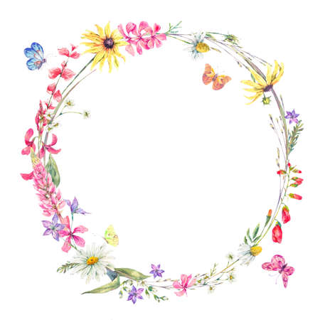 Watercolor natural summer round frame with wildflowers. Meadow herbal, chamomile and butterflies. Botanical floral wreath isolated on white background