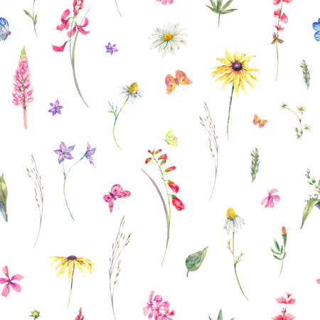 Watercolor natural summer seamless pattern with wildflowers. Meadow herbal, chamomile and butterflies. Botanical floral illustration on white background