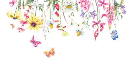 De groetkaart van de waterverf natuurlijke zomer met wildflowers. Weide-kruiden, kamille en vlinders. Botanische bloemenillustratie die op witte achtergrond wordt geïsoleerd Stockfoto