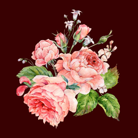 Vintage watercolor pink english roses Stock Photo
