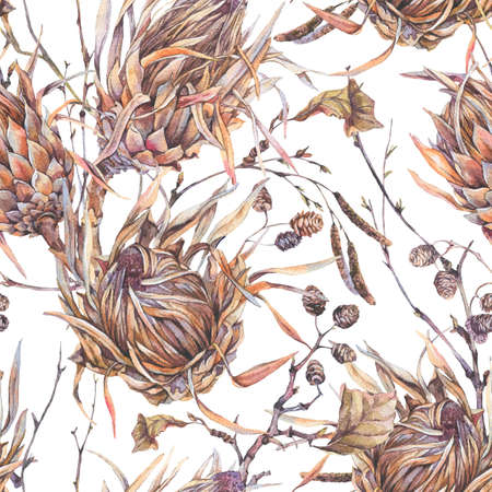 Watercolor botanical flowers seamless pattern, protea, wildflowers, twigs, branches and leaves. Dry vintage bouquet. Nature illustration on white background