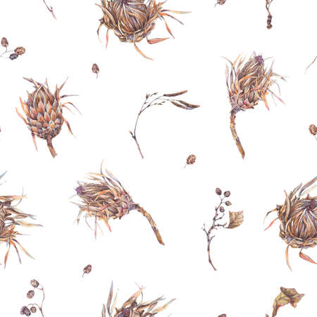 Watercolor botanical flowers seamles pattern, protea, wildflowers, twigs, branches and leaves. Dry vintage bouquet. Nature illustration on white background Stock Photo