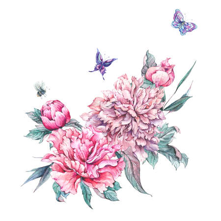 Watercolor pink flowers blooming peonies