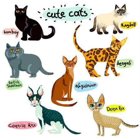 Set of cartoon cats characters