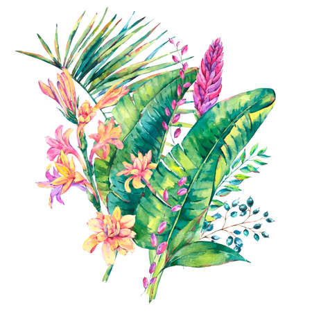 Exotic natural vintage watercolor blooming orchid flowers, banana leaves, wildflowers. Botanical isolated natural Illustration on white background, greenery vibes