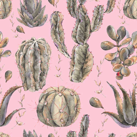 Exotic natural vintage watercolor cactus seamless pattern. Cactus, succulent, flowers. Botanical natural Illustration on pink background