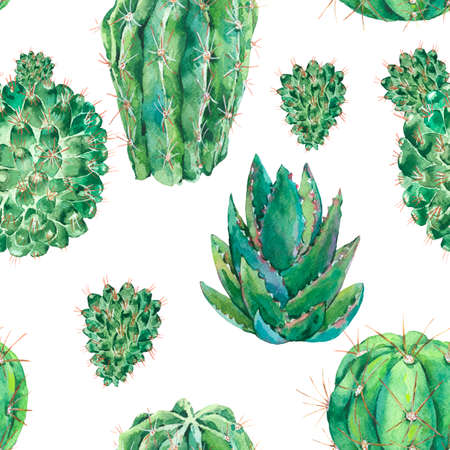 Exotic natural vintage watercolor cactus seamless pattern. Cactus, succulent, flowers. Botanical natural Illustration on white background