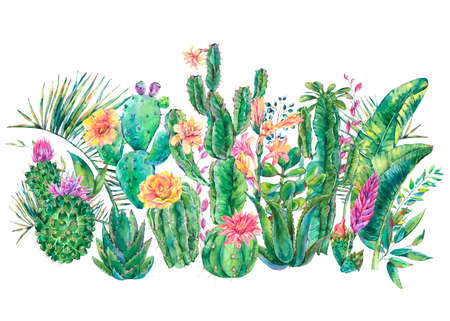 Exotic natural vintage watercolor blooming cactus greeting card. Cactus, succulent, banana, orchid flowers. Botanical isolated natural Illustration on white background