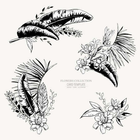 Vector monochrome set of tropical leaves, Exotic vintage blooming orchid flowers, banana leaves, wildflowers, greenery vibes. Botanical frame, template invitation, natural black white collection