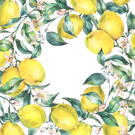 Watercolor vintage greeting card, branch of yellow fruit lemon