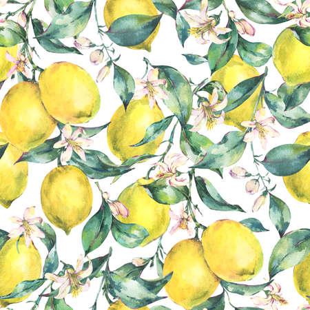 Watercolor vintage seamless pattern, branch of fruit lemon 免版税图像 - 115247720