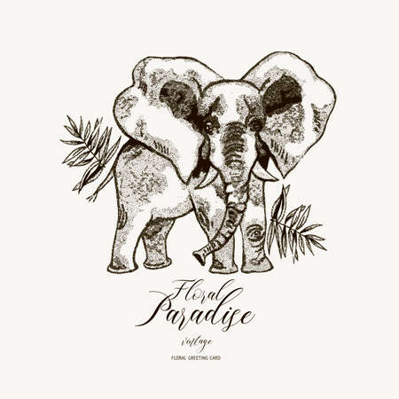 Vector black and white summer greeting card, vintage jungle illustration, Natural Exotic Tropical template with elephant