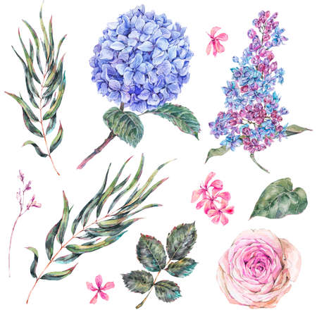 Watercolor vintage set floral elements, roses, lilac, blue hydrangea and wildflowers.