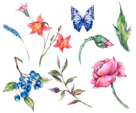 Vintage watercolor set of wild flowers Reklamní fotografie