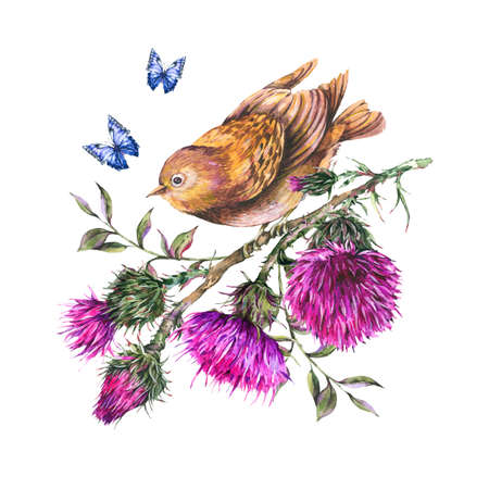 Watercolor bird on a branch with thistle, blue butterflies, wild flowers