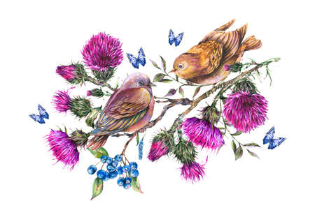 Watercolor pair of birds on a branch with thistle, berries, blue butterflies, wild flowers