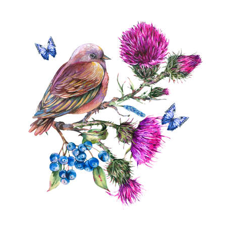 Watercolor bird on a branch with thistle, blue butterflies, berries, wild flowers